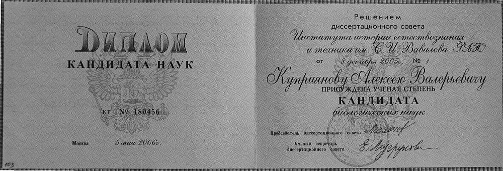 alexei kouprianov Алексей Куприянов cv department of   диплом 109 885